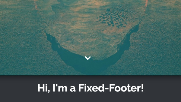 Demo Image: Simple Fixed Footer