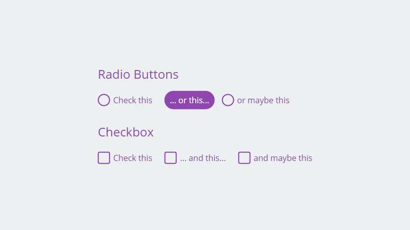 Demo Image: Pure CSS Fancy Checkbox/Radio