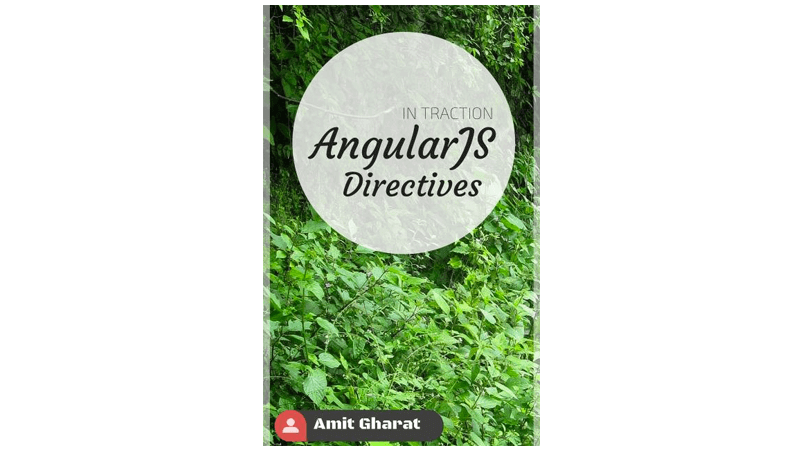 Cover book: AngularJS Directives In Traction