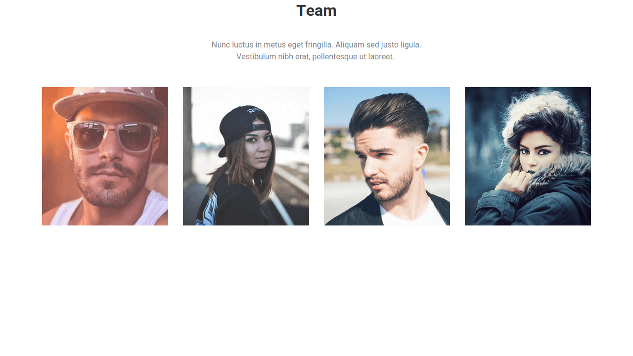 Demo image: Bootstrap Team Grid