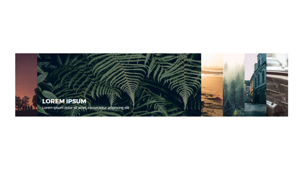 Demo Image: Responsive Accordion