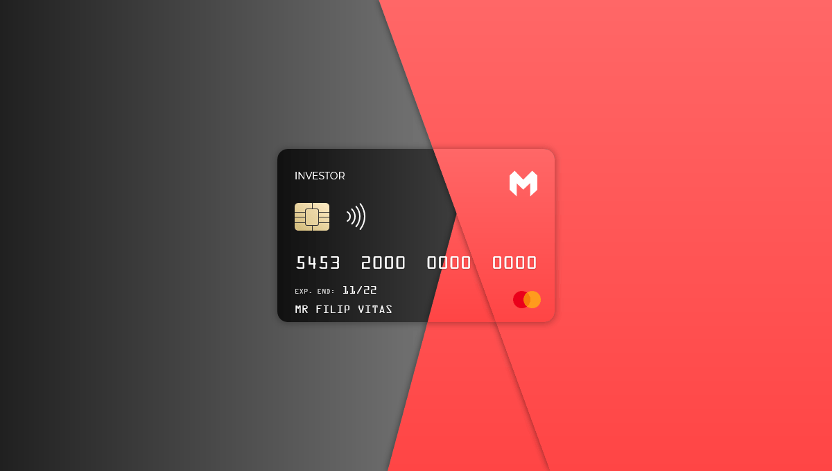 Demo image: Pure CSS Credit Card