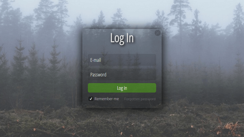 Demo Image: Log In Form