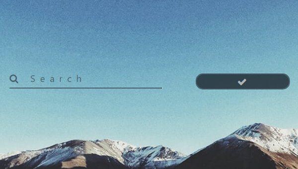 Demo Image: Search Field
