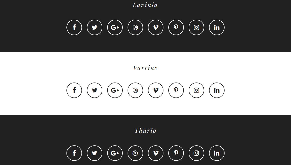 20 CSS Social Media Icons