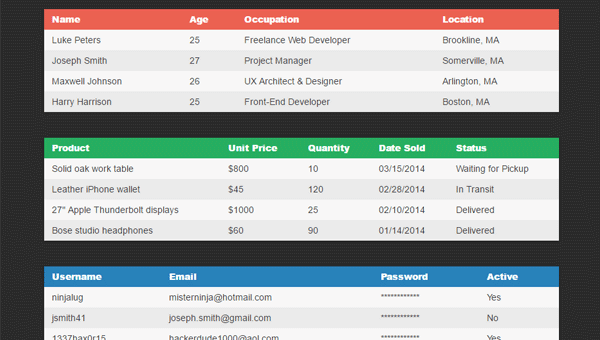 Demo Image: CSS Responsive Table Layout